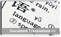 document translation atlanta